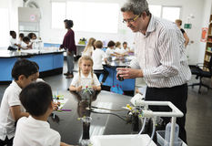 Kindergarten students learning experiment in class. Diverse kindergarten students learning experiment in science laboratory class royalty free stock photos