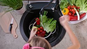 Kinderhände, die Kopfsalatblätter waschen stock video