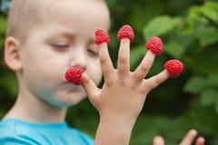 Kinderhand mit Himbeere auf Fingern Stockfotos