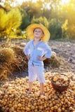 Kinderhilfen, zum der Ernte zu nehmen Lizenzfreies Stockbild