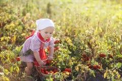 Kinderhilfen, zum der Ernte zu nehmen Lizenzfreies Stockfoto