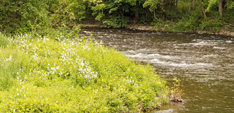 Kinderhook Creek and White Dames rocket Royalty Free Stock Photo