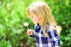 Kinderjaren, toekomst, de groeiconcept stock foto's