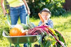 Kinderjunge und -mutter im inländischen Garten Entzückendes Kind, das nahe der Schubkarre mit gesundem organischem der Ernte steh Lizenzfreie Stockfotografie