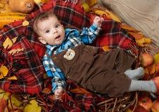 Kinderjungenlüge auf Schottenstoffplaid mit gelbem Herbstlaub, Äpfeln, Kürbis und Dekoration, Herbstsaison Stockbilder