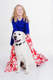 Kindermädchen bedeckt ihren Hund durch Decke Lizenzfreies Stockbild