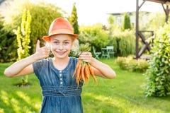 Kindermädchen, das Bündel junge Karotten im Garten hält Stockbilder