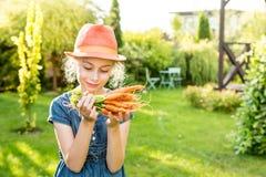 Kindermädchen, das Bündel junge Karotten im Garten hält Stockfotos