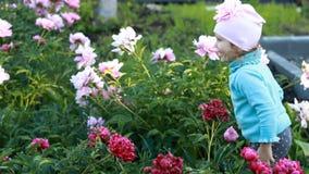Kindermädchen plaing und tanzt in den Garten mit Pfingstrosen Das Konzept des Glückes und der Kindheit stock footage