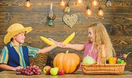 Kinderm?dchenjunge feiern rustikale Art des Erntefests Feiern Sie Erntefest Kinder spielen Maiskolbengem?se lizenzfreie stockfotografie