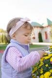 Kinderrührende Blume Stockbild