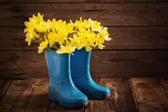 Kinderschuhe mit Frühlingsblumen Stockbilder