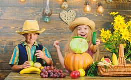 Kinderspiel-Gemüsekürbiskohl Kindermädchenjungen-Abnutzungshut feiern rustikale Art des Erntefests celebrate stockfotos
