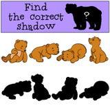 Kinderspiele: Finden Sie den korrekten Schatten Kleine nette Babybären vektor abbildung