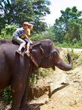 Kindertouristen, die auf einen Elefanten in Sri Lanka fahren Lizenzfreies Stockbild