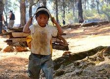 Kindertragendes Brennholz Stockbilder