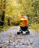 Kinderwagen mit einem kleinen Kind bedeckt mit einer Decke auf der Straße umgeben durch Herbstbäume Schlaf und Weg in der Frischl lizenzfreie stockfotos