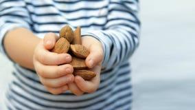 Kindhanden met sommige bruine amandelen tegen een witte achtergrond royalty-vrije stock foto