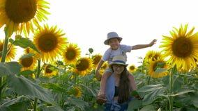 Kindheit, das Kind hebt Hände Flug auf dem Sonnenblumenfeld nachahmend an, das auf dem Hals der Schwester im Sonnenlicht sitzt stock footage