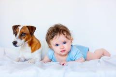 Kindjongen met blauwe ogen en zijn vriendenhond Royalty-vrije Stock Afbeeldingen
