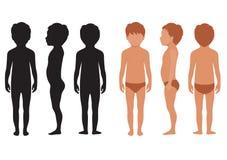 Kindlichaam, menselijke anatomie, stock illustratie
