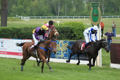 Kindly boy steeplechase in Lysa nad Labem Royalty Free Stock Photo