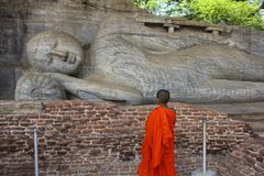 Kindmonnik Contemplating Reclining Buddha, Sri Lanka stock afbeeldingen