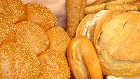 Kinds of Bread royalty free stock images