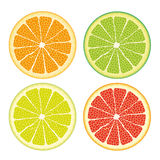 Kinds Of Citrus Fruits Royalty Free Stock Photo