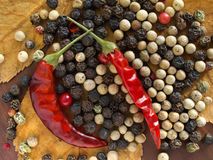Kinds of dry pepper. Stock Images