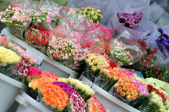 Kinds of flower in selling. Various flower selling at flower shop, shown as colorful fresh flower, or good environment for living and life Royalty Free Stock Images