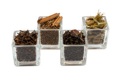 Kinds of spices Stock Image