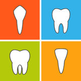 Kinds of tooth. stock illustration