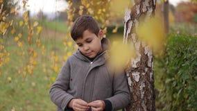 Kindverblijf dichtbij de berk in de herfst Gelukkige jongen die in het park lopen Gele boom stock footage