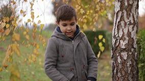 Kindverblijf dichtbij de berk in de herfst Gelukkige jongen die in het park lopen Gele boom stock videobeelden
