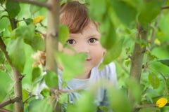 Kindzitting op een boom en het verbergen Royalty-vrije Stock Afbeeldingen