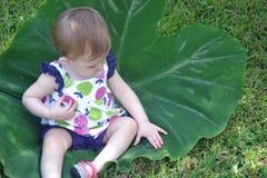Kindzitting op een groot blad Royalty-vrije Stock Afbeeldingen