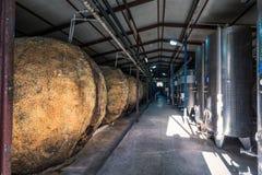 Kindzmarauli Georgische wijnmakerij stock fotografie