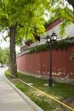 Kines Asien, Peking, Beihai parkerar, de forntida byggnaderna, gatalampan, det gamla trädet Royaltyfri Foto