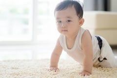 Kines behandla som ett barn pojkekrypning på matta Arkivfoto