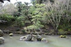 Kines beskurit träd på sjön fotografering för bildbyråer