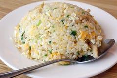 kines stekt rice arkivbilder