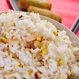 Kines stekte ris och springrolls Royaltyfri Fotografi