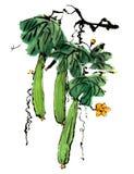 Kines-stil teckningar, skissar, luffasvampblomman Royaltyfri Bild