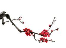 Kines-stil teckningar, skissar, plommonblomman royaltyfri fotografi