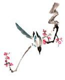 Kines-stil teckningar, skissar, plommonblomman Royaltyfri Bild