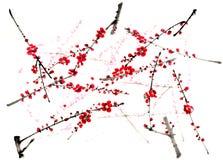 Kines-stil teckningar, skissar, plommonblomman Fotografering för Bildbyråer