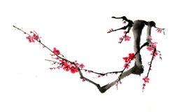 Kines-stil teckningar, skissar, plommonblomman Arkivbilder