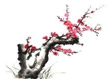 Kines-stil teckningar, skissar, plommonblomman Royaltyfria Bilder