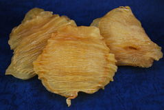 Kines torkade den mat torkade fiskgasblåsan Royaltyfri Bild